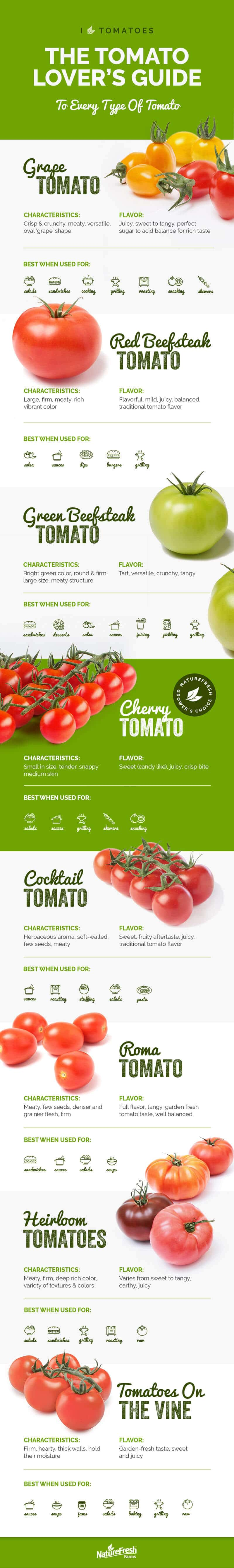 can dogs and cats eat tomatoes