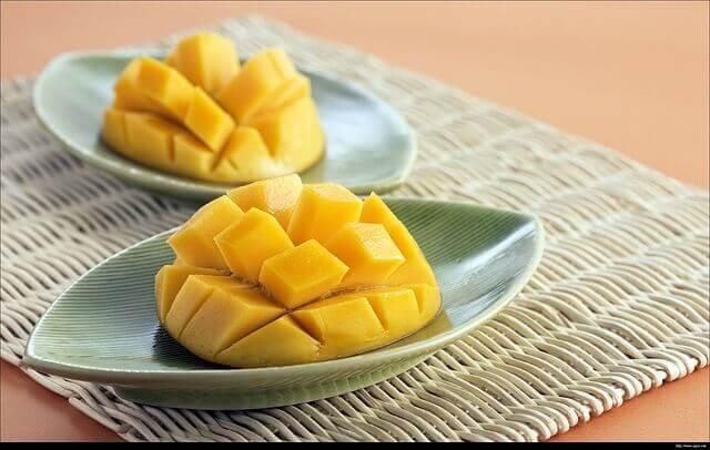 can cats eat mango ice cream