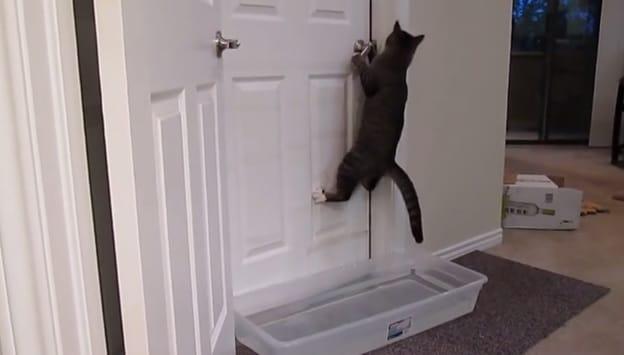 door-drop-hobby