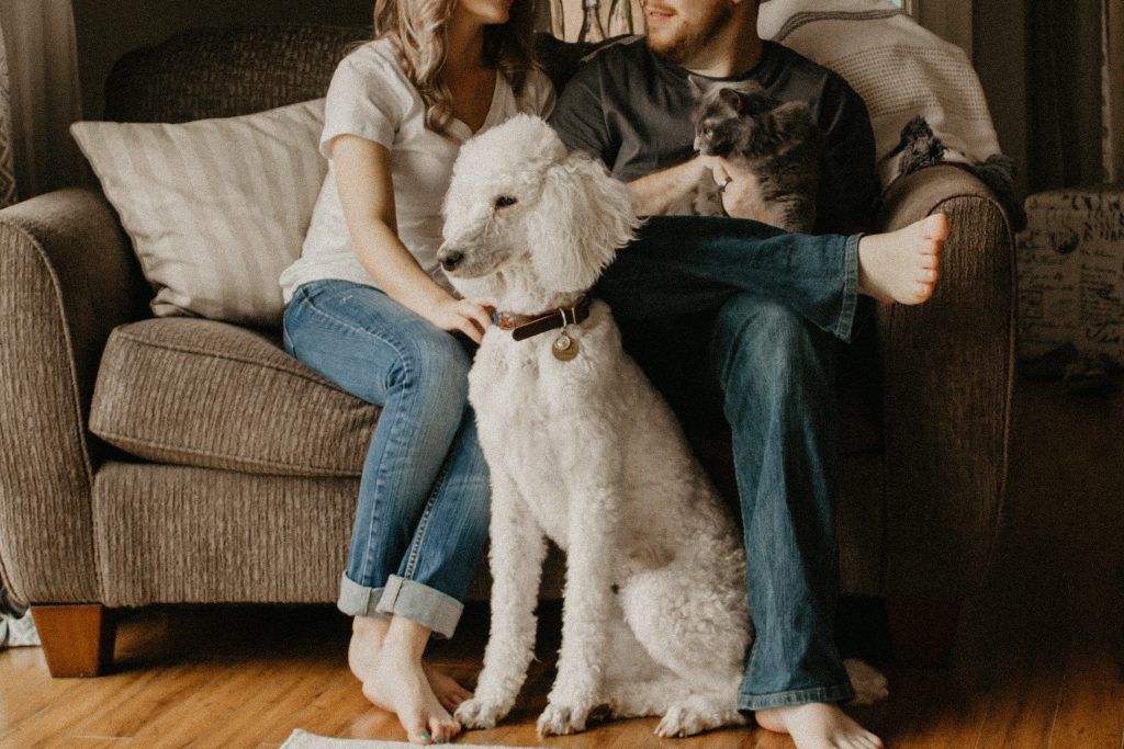 Strategies For Coping With The Death Of A Pet